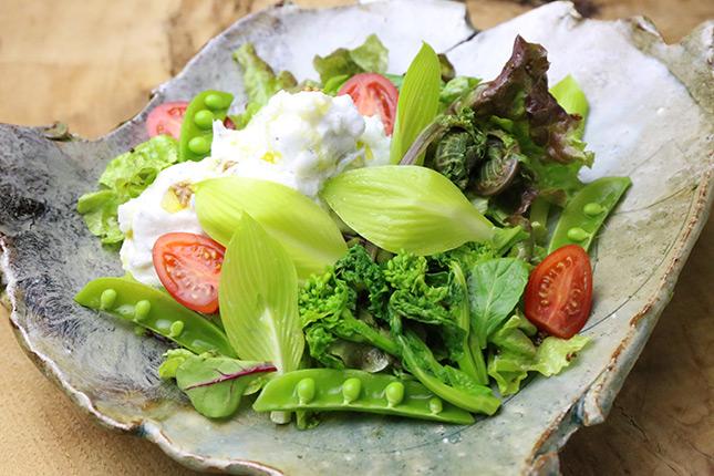 しらすと春野菜のふわふわサラダ